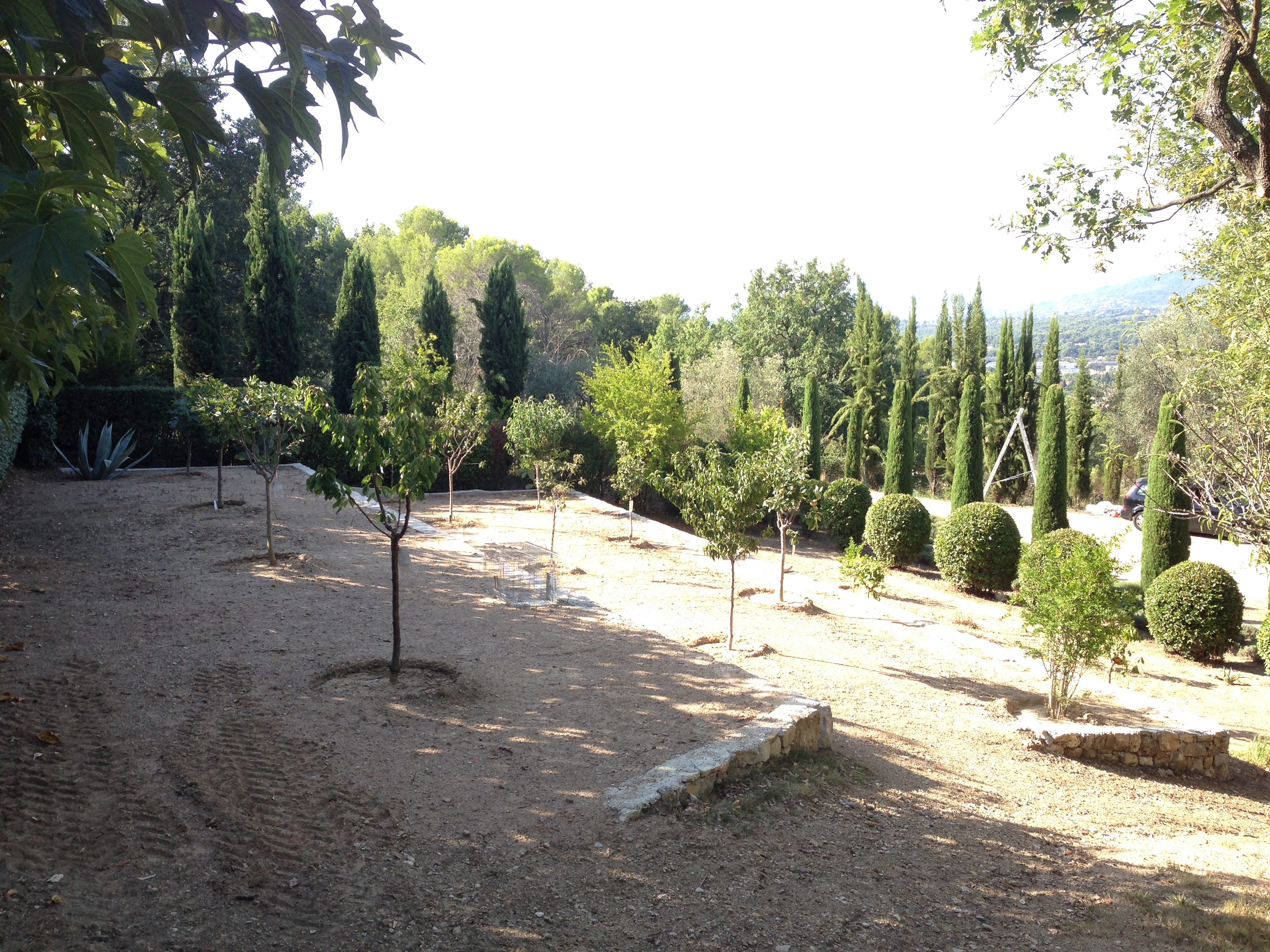 The re-designed terraced orchard