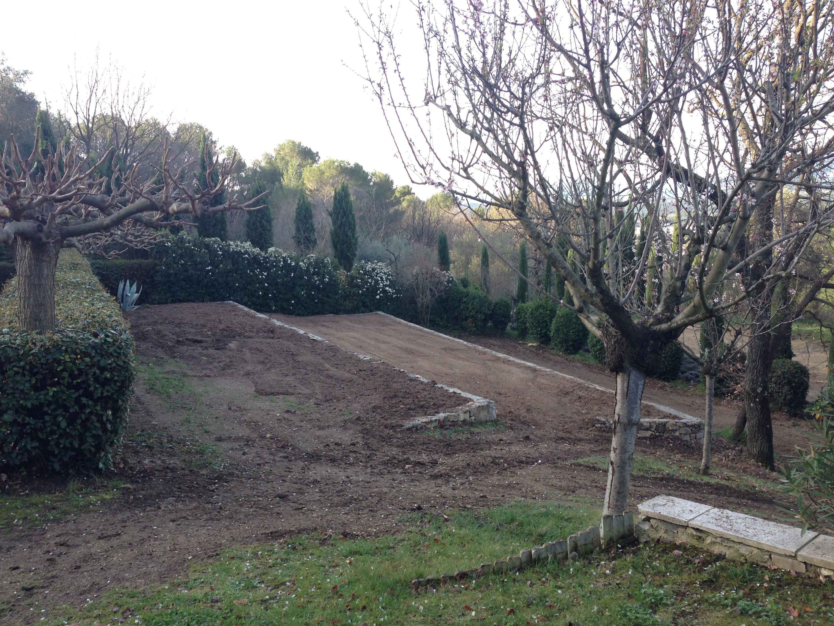 The terraces ready for the planting